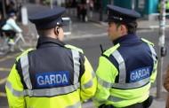 Irska policija želi nazaj avtomatsko orožje